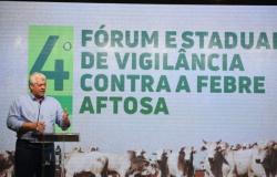 Fórum reforça a importância de compartilhar responsabilidades para prevenir a febre aftosa