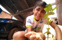 Verde Novo recepciona alunos com distribuição de árvores no Dia da Natureza