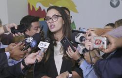 Deputada de MT apresenta indicação para que governo suspenda Zoneamento Ecológico Econômico