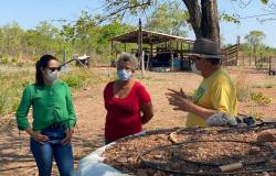 Fundo de Aval Garantidor pode mudar realidade de pequenos produtores; Deputada pede celeridade em regulamentação