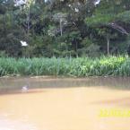hauahuahauhauhauahhauhauahuahuahauhuDia Internacional da Água 22-03-2016. Documentário ÁGUA-VIVA.