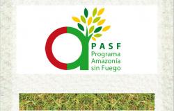 Manual de Manejo Sostenible de Pastizales - PAsF - Bolívia - Jurandir Melado