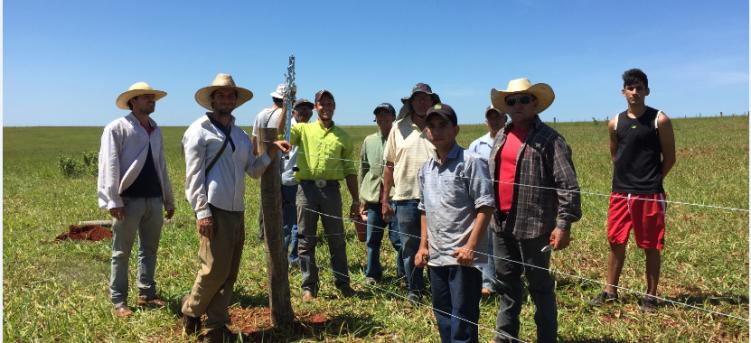 PSDRS – SMA – SP patrocina 13 oficinas de Capacitação com Implantação de Unidades Demonstrativas de Manejo de Pastagem Ecológica em São Paulo