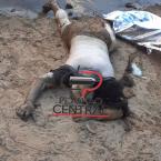 Corpo de mulher é  encontrado por pescadores no Rio Machado em Ji-Paraná