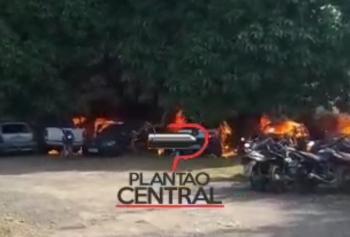 matéria  plantaocentral.com.br
