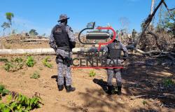 Proprietário de terra comete crime ambiental e é multado em Um Milhão de Reais