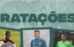 Guarani realiza mais cinco contratações para esta temporada