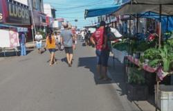 Ji-Paraná! Feira do feirão do produtor acontece nesta 5° feira na rua Dom Augusto