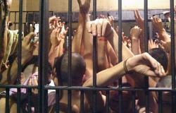 Estudo do Ipea aponta que violência deve continuar avançado no Brasil até 2023