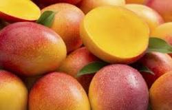 Frutas brasileiras quase não são consumidas em outros países