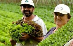A hora da vez da agricultura familiar