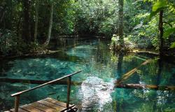 Governo busca soluções para financiar o turismo em Nobres