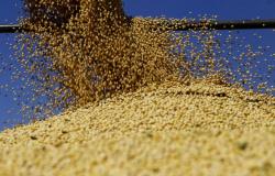 Com demanda aquecida por biodiesel, Mato Grosso esmaga recorde de soja