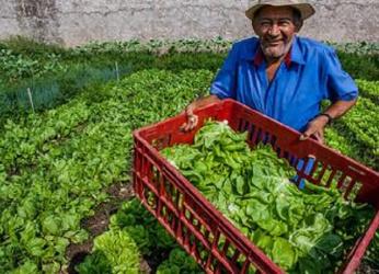 Parceria entre Seaf e REM MT beneficia mais de 8 mil famílias da agricultura familiar