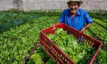 Mesmo com a pandemia, Governo do Estado e o Programa REM Mato Grosso não deixaram de atuar para garantir a geração de emprego e renda às famílias do campo. - Foto por: Mayke Toscano/Secom