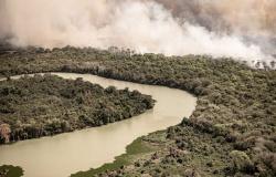 Famílias pantaneiras prejudicadas após queimada precisam de ajuda