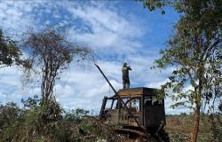 Fiscalização apreende quatro tratores e aplica R$ 30 milhões em multas por crimes ambientais em MT