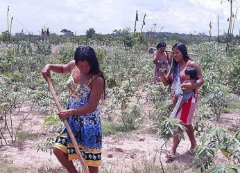 Instituto faz vaquinha para arrecadar dinheiro para compra de ferramentas e insumos para preparo de roças nas aldeias em MT