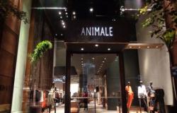Grifes Animale e A.Brand são acusadas de trabalho escravo em sua produção
