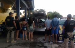 Ação da DRE e PRF apreende mais de 350kg de maconha que abasteceria o tráfico em Cuiabá