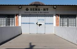 MPE denuncia empresária por suspeita de fraude na Sema