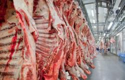 Após caso do mal da vaca louca em Mato Grosso, Brasil aguarda autorização para voltar a exportar carne para a China