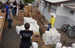 Polícia recupera R$ 1 milhão em agrotóxicos roubados de fazenda em Mato Grosso