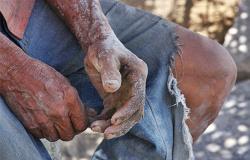 Em 4 anos, Justiça do Trabalho recebe quase 500 ações por trabalho escravo em MT