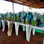 hauahuahauhauhauahhauhauahuahuahauhuNova Monte Verde: Assistência Social realiza entrega de cesta básica e cesta verde