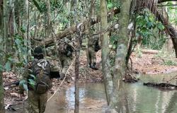 """""""Novo Cangaço"""" continua sendo desmantelado pelas Forças de Segurança da PMMT"""