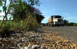 Setor não sabe quantificar perdas no transporte em Mato Grosso