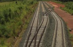 Ferrovia Sinop-Itaituba transportará até 42 mi de toneladas de produtos