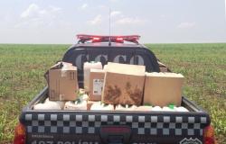 Contrabando de defensivos agrícolas: o barato que sai caro