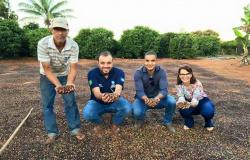 Alta Floresta: Parceria fortalece agricultura familiar, avalia Secretário de Agricultura