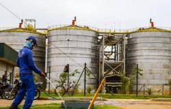 Será inaugurada em Mato Grosso a 1ª usina de etanol de milho do País