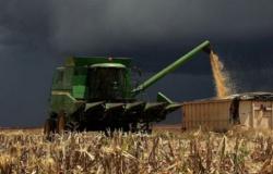 La Niña deixa produtor mato-grossense em alerta para possibilidade de chuva durante plantio de grãos