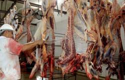 Comissão debaterá descentralização de empreendimentos no setor de carne