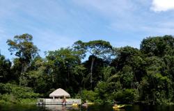 Alta Floresta integra categoria C do Mapa do Turismo Brasileiro