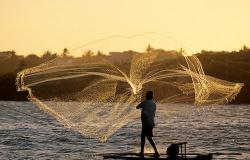 54% do seguro defeso pago ao pescador artesanal em Mato Grosso foi indevido,