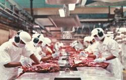 Vendas de carne bovina crescem 30% em MT