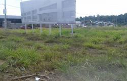 Senai-MT abre licitação para construir unidade em Alta Floresta
