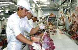 Frigoríficos seguem entre os 5 maiores empregadores de Mato Grosso - confira