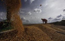Colheita de soja em Mato Grosso encerra janeiro abaixo do ano de 2017