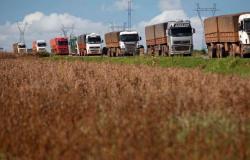 Frete da soja sofre reajuste de 10% em Mato Grosso