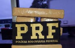 PRF apreende cerca de 20 Kg em ônibus que fazia a linha Cascavel (PR) a Alta Floresta