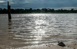Sema alerta para restrição da pesca em áreas de proteção integral