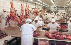 frigoríficos de Mato Grosso voltaram a abater