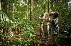 Turismo gerou mais de 2.400 empregos no primeiro quadrimestre em Mato Grosso