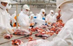 Trabalhadores dos frigoríficos da região Norte de Mato grosso ainda estão sem reajuste salarial.