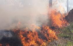 Defesa Civil de Alta Floresta alerta para baixa umidade e aumento de queimadas